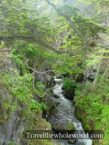 Argentina Ushuaia Creek Valley