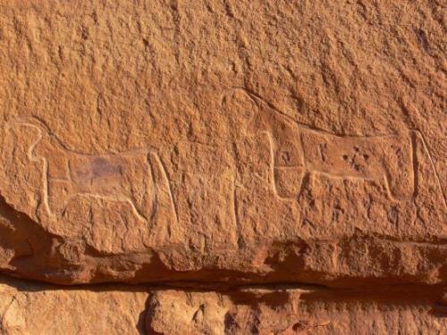 Jordan Carving