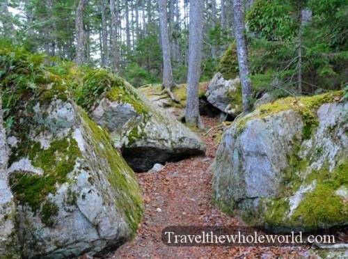 Maine-Acadia-Hiking-Trail2