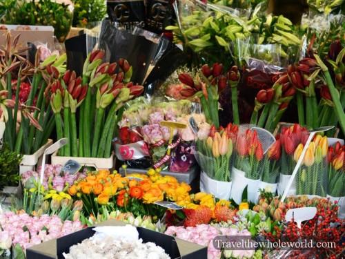Netherlands-Amsterdam-Flowers