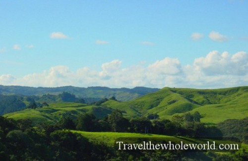 New-Zealand-Greenhills