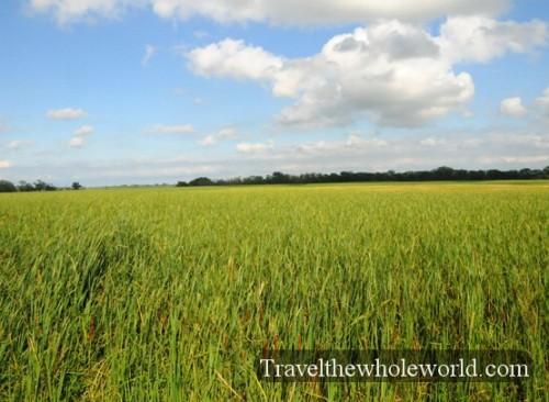 North-Dakota-Grasslands