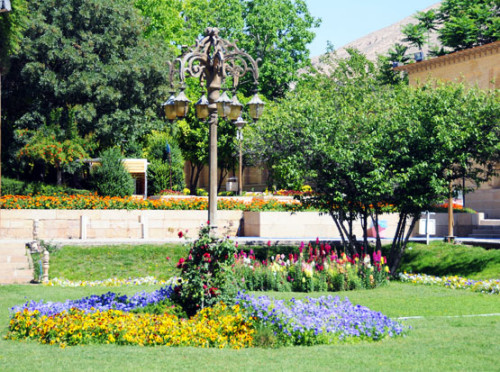 Iran Shiraz Gardens Flowers
