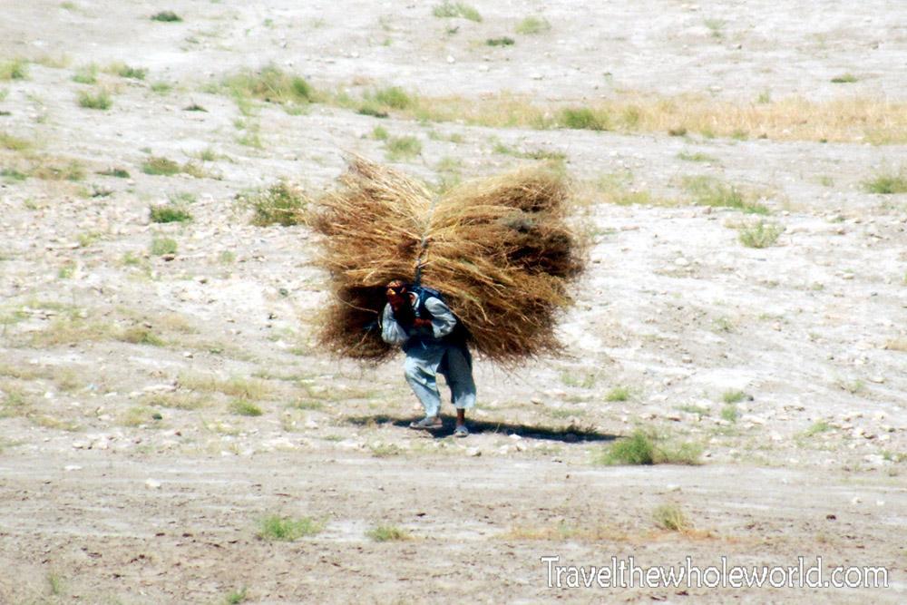 Afghanistan Mazar Sharif Hay