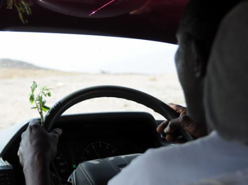Somalia Driver Khat