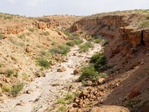 Somaliland Canyons