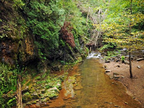 Virginia Natural Bridge Creek