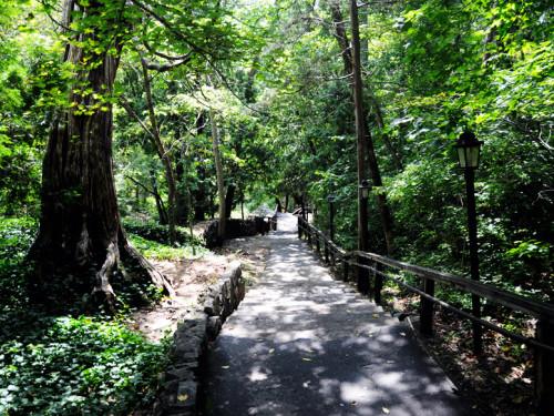 Virginia Natural Bridge Path