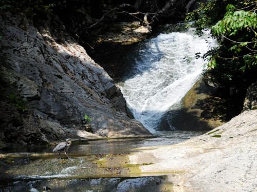 Virginia Natural Bridge Waterfall