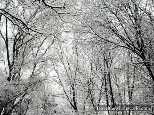 Virginia-Snow-Storm