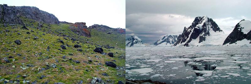 Antarctic-Scenery