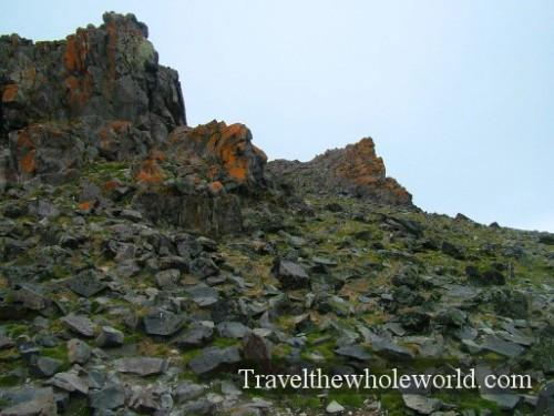 Antarctica SSI Grassy Rocks
