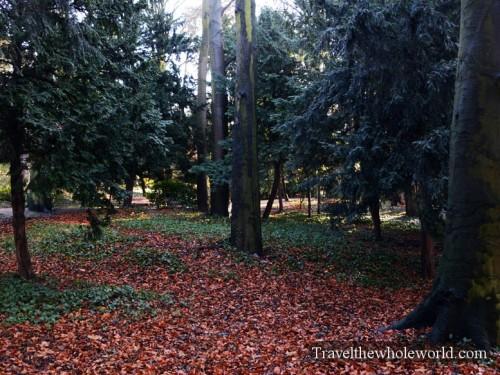Belgium Brussels Koloniale Tuin Forest