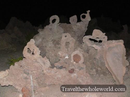 Bolivia Tomb Coral