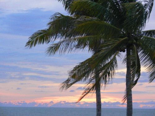 Brunei Ocean