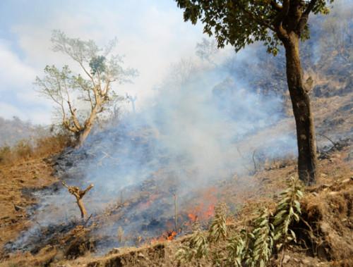Ethiopia Simien Mountains Fire
