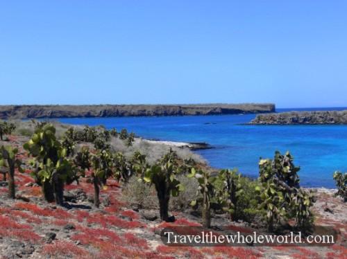 Galapagos Desert