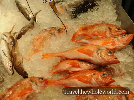 Traveling in portland maine for Portland fish market