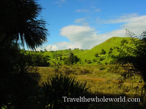 New-Zealand-Greenhills2
