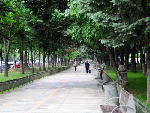Romania Bucharest Park