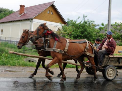 Romania Village Carriage