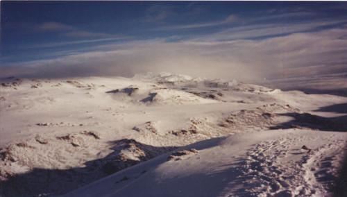 Tanzania Kilimanjaro Snows