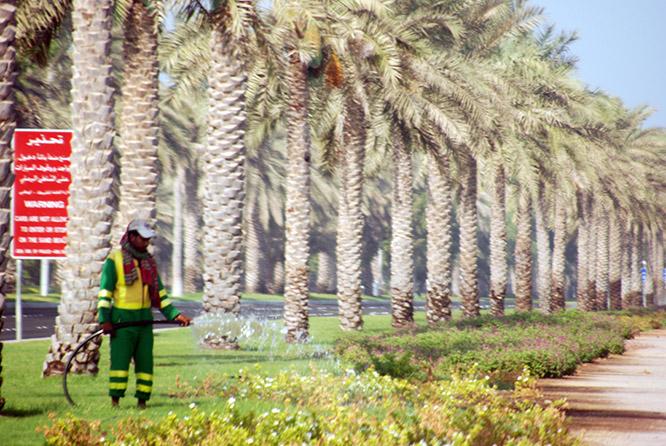 UAE Abu Dhabi Watering