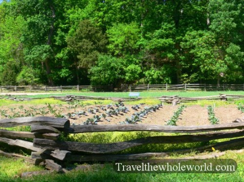 George Washington's Gardens