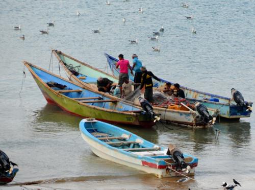 Yemen Aden Boats