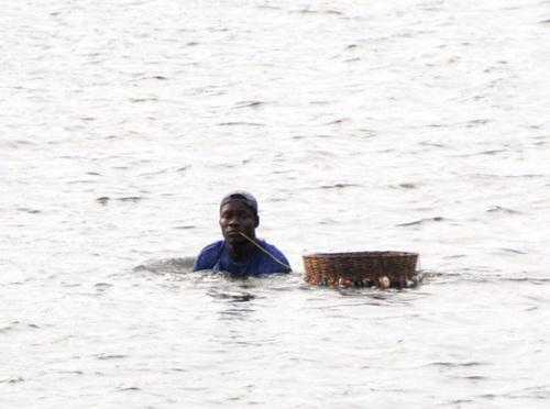 Benin Crabbing