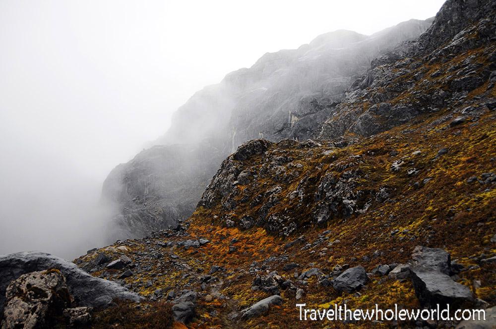 Carstensz-Pyramid-Highlands-Moss