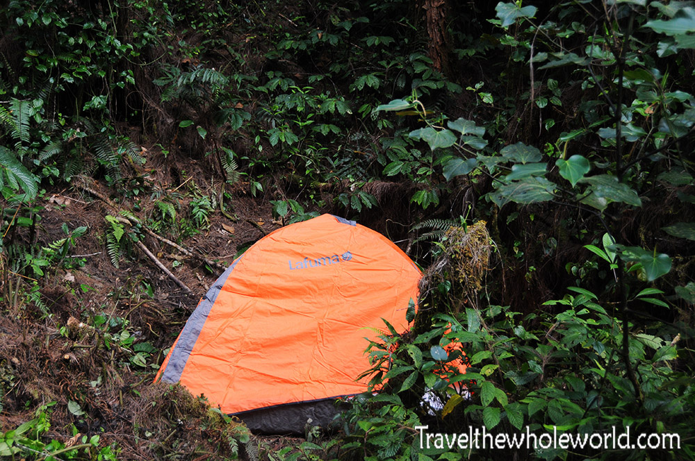 Carstensz Pyramid Rainforest Camp 1 Tent