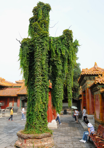 China Beijing Forbidden City Tree
