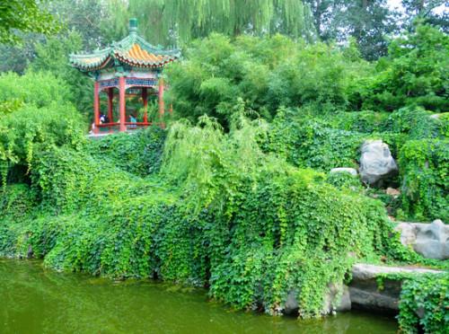 Park in Beijing