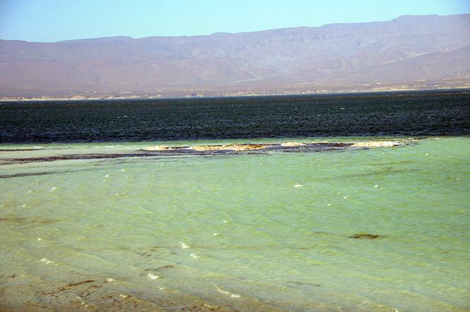 Djibouti Lac Assal Green