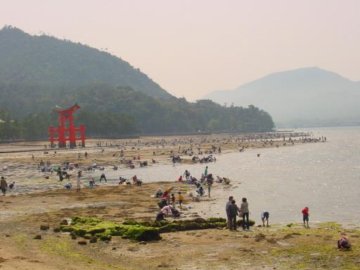 Japan Miyajima