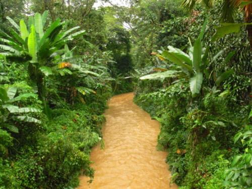 Malaysia River
