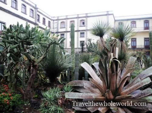 Mexico City National Palace Garden
