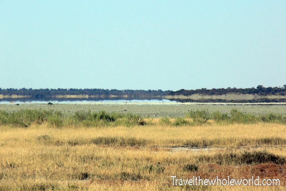 Namibia Etosha Landscape
