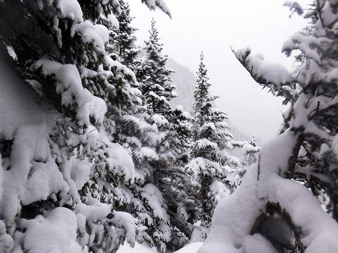 New Hampshire Mt Washington Snow