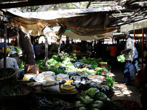 Nigeria Kano Farmers Market