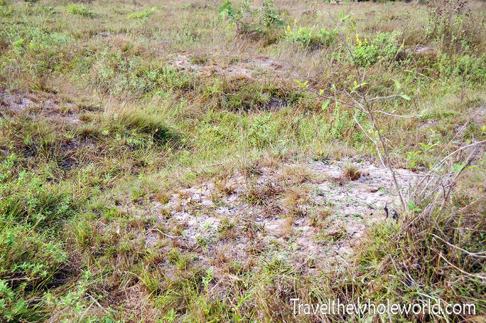 Nigeria-Slavery-Grave-Mounds