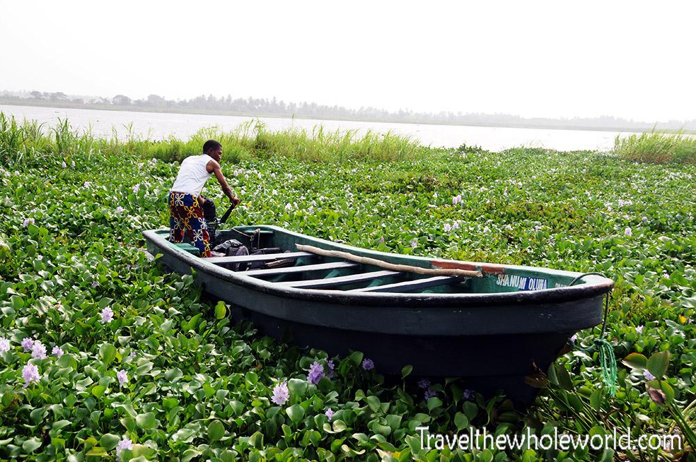 Nigeria Slavery Lily Pads