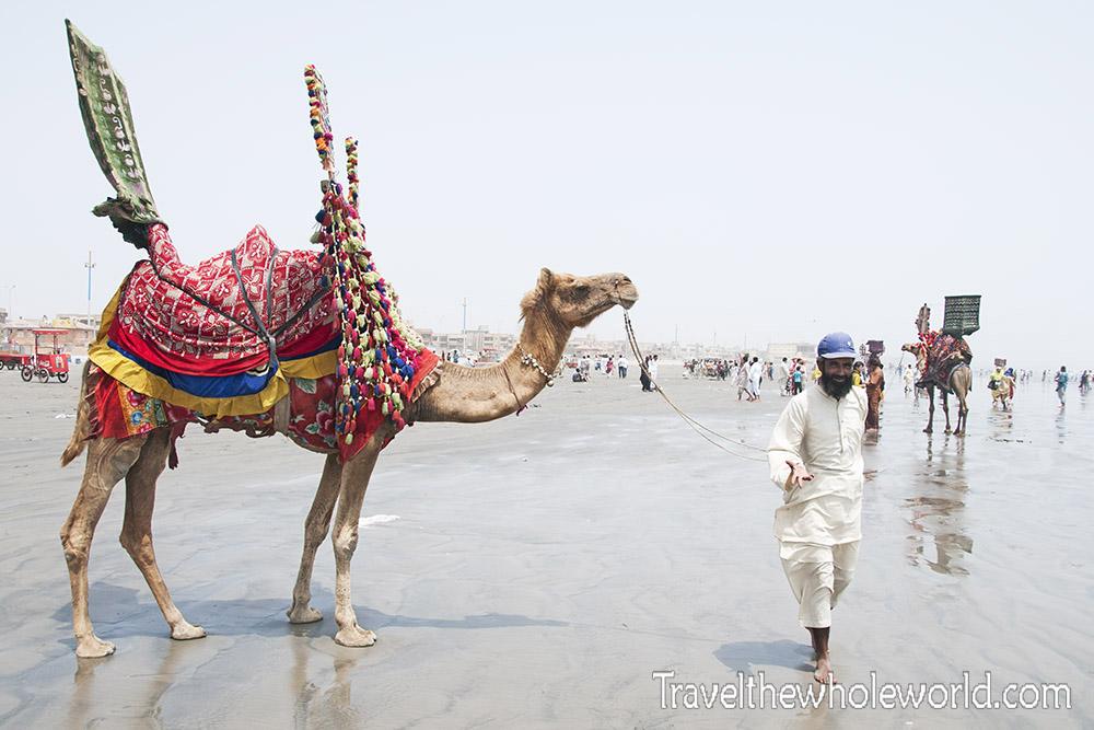 Pakistan Karachi Beach Clifton Camel