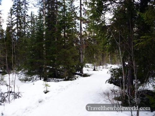 Sweden Tannforsen Hiking Trail