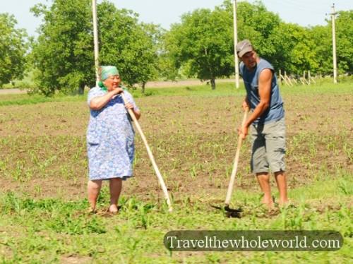 Moldova Farmers
