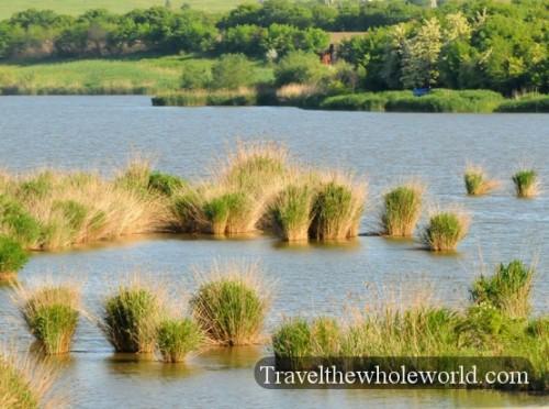 Moldova Grass Islands