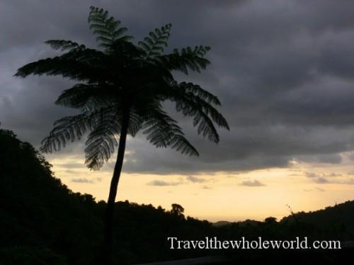 Puerto Rico El Yunque Sunrise