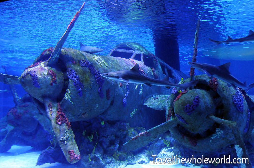Turkey Antalya Aquarium Aircraft