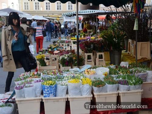 Austria Salzburg Market Flower